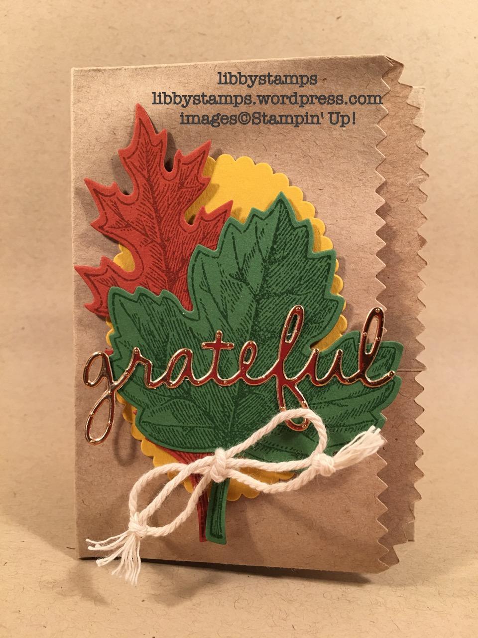 libbystamps, stampin up, Seasonal Frame Thinlits, Copper Foil, Kraft Tag A Bag Gift Bags, Vintage Leaves, Leaflets Framelits, Season Frame Thinlits