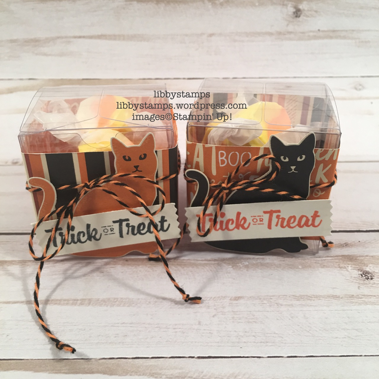 libbystamps, stampin up, Tiny Treat Boxes, Cat Punch, Halloween Treat Holder, Spooky Cat, Spooky Cat Bundle, Spooky Night DSP, Washi Label Punch
