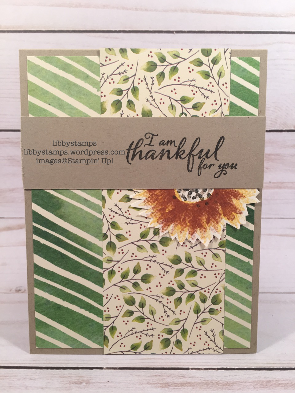 libbystamps, stampin up, Painted Harvest, Painted Autumn  DSP, TSOT