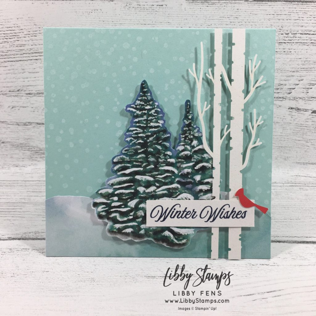libbystamps, Stampin' Up!, 2019 October Paper Pumpkin, Winter Woods, Paper Pumpkin, FMS409